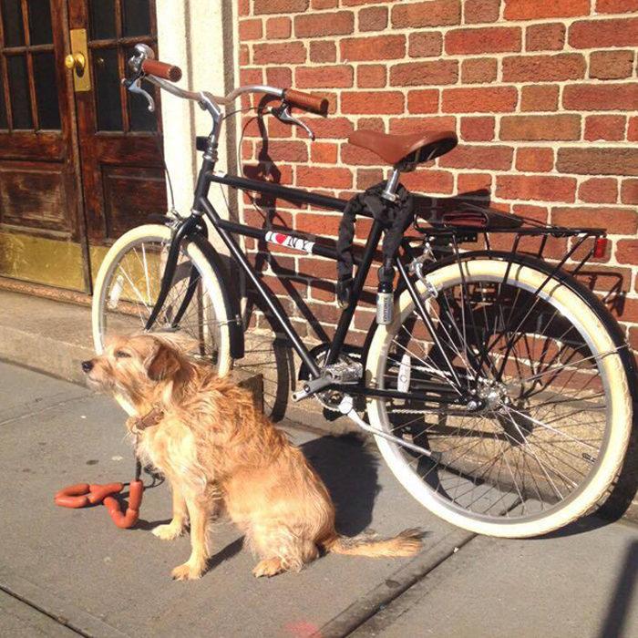 the-wow_sophie-und-tompkin-in-der-fashion-metropole_bike