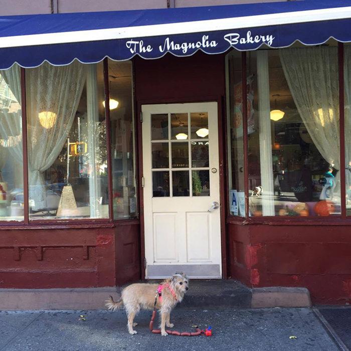 the-wow_sophie-und-tompkin-in-der-fashion-metropole_bakery