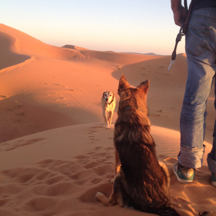 the-wow_laura-und-rocco_marokko_sahara-mit-sahara